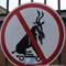 смешные дорожные знаки