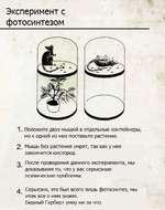 Эксперимент с фотосинтезом 1. Положите двух мышей в отдельные контейнеры, но к одной из них поставьте растение. 2. Мышь без растения умрет, так как у нее закончится кислород. 2 После проведения данного эксперимента, мы * доказываем то, что у вас серьезные психические проблемы. 4 Серьезно, это б