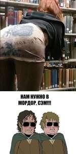 НАМ НУЖНО В МОРДОР, СЭМ!!!