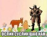 Ослик, суслик, Шао Кан