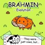OBRAHMI'N i— *,*i\ ^-Evolution- <£Ь