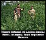 """;' Ж*% ж Щ>ШЫ Ж'^Ш""""01»^;^Л,и С фронта сообщают, что вышли на окраины Москвы, путлеровцы бегут в направлении Магадана"""