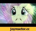 Fluttershy Drops Acid,Entertainment,acid trip,my little pony,friendship is magic,trippy,psychedelic,trance,Music: Give Me Rave, by Dj Dune http://grooveshark.com/#!/s/Give+Me+Rave/3Qfo89?src=5