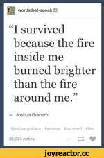 "wordsthat-speak ""I survived because the fire inside me burned brighter than the fire around me."" — Joshua Graham #joshua graham »survive »survived »fire 26,024 notes ••• ^ U"
