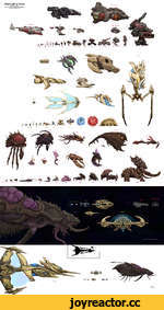 StarCraft to Scale