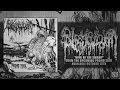 Slamphibian - King Of The Swamp [Single] (2016) SW Exclusive,Music,Slamphibian,King Of The Swamp,Single,Promo,2016,Putrified J,Slamming Brutal Death Metal,Slamming Beatdown,Brutal,Slam,Death Metal,Beatdown,Hardcore,Breakdown,Breakdowns,Metal,Death,Internal Bleeding,Suffocation,Parasitic