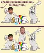 Владимир Владимирович, У вмешайтесь!