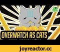 "Overwatch but with Cats - Support Heroes - ""Katsuwatch"",Entertainment,fight,animation,katsuwatch,katsu,watch,katsu cat,katsu watch,overwatch,blizzard,play of the game,highlight intros,dillongoo,dillon goo,dillon,goo,dillon gu,over watch,nyanwatch,cute cats,overwatch cats,overwatch but with"