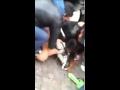 Собака напала на ребенка,Comedy,VideoEU,ru,Видеохостинг,Собака,напала,на,ребенка,