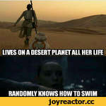 RANDOMLY KNOWS HOW TO SWIM