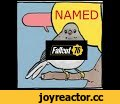 Fallout 76 Radio (Annoyed Bird meme),Comedy,fallout 76,fallout 3,radio,meme,annoyed bird,birds meme,birds,false knees,butcher pete,almost heaven,country roads,west virginia,HE'S HACKIN' AND WHACKIN' AND SMACKIN' HE'S HACKIN' AND WHACKIN' AND SMACKIN' HE'S HACKIN' AND WHACKIN' AND SMACKIN' HE JUST