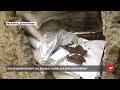 Военные ВСУ «увидели» российских снайперш биатлонисток и новейшие мины на Донбассе,Film & Animation,,