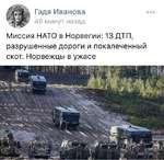 Гадя Иванова 49 минут назад Миссия НАТО в Норвегии: 13 ДТП, разрушенные дороги и покалеченный скот. Норвежцы в ужасе