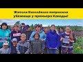 Жители Киселёвска попросили убежище у премьер-министра Канады,People & Blogs,Жители Киселевска убежище,кузбасс жители убежище канада,кемеровская область условяи жизни,видео ёшкин крот,Вы только посмотрите, что творится-то в «поднявшейся с колен» России!  Пока Путин кормил Си Цзиньпиня из золотых тар