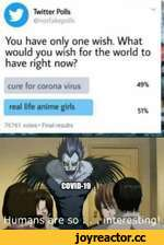 < Twitter Polls  poll ! You have only one wish. What would you wish for the world to have right now? » ( cure for corona virus 49% real life anime girls 76761 vote* * Final results