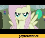 Fluttershy gets BEEBEEPED in the maze.,Comedy,my little pony,tiarawhy,adult,humor,fluttershy,discord,maze,MLP:FIM,bronies,flutterage,animation,flash,My,Little,Pony,beepbeep,beepbeepd,Music generously provided by: http://soundcloud.com/masterpj/ http://laserpon3.tumblr.com/ Animation by: tiarawhy