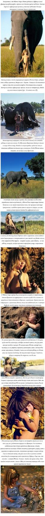 Знакомьтесь, это Шиппи Фегре. Шиппи родилась в Яфри\е в семье французскую фотографов и провела свое детство крайне необычно. Февочка выросла в африканский пустыне, установив необычайно близкие отношения со многими дикими животными. <Вевочку назвали в честь американской актрисы Шиппи Хедрен, котора