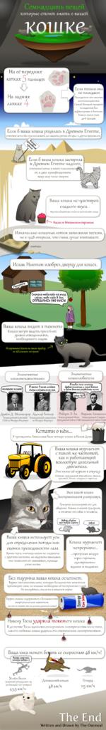 Семнадцать вещей которые стпоиш знать о вашей кошке- На её передни* лапка* } пальцев Если только она не полидакт Полидактия это явление многопальцевости. Самый большой процент полидактов был зафиксирован в Бостоне. Кошки имели там до 8 пальцев. Если б ваша кошка родилась в Древнем Египте, ег