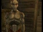 The Elder Scrolls 3: Зеленый слоник,Games,,Как поспал, братишка, тебя даже вчерашний шторм не разбудил! (с) Первым, с кем пришлось встретится главному герою, оказался не Jiub, а Пахом...