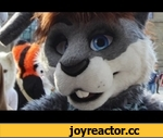 EUROFURENCE 19 MUSIC VIDEO feat Snugglebunny - by Keks,People,,I really really like this fursuiter. He is soo damn cute and he is a bunny and his name is sooo cute and his voice totally fits to him and is damn cute too...   He was one of my favorite fursuiters at Eurofurence, so I made a special